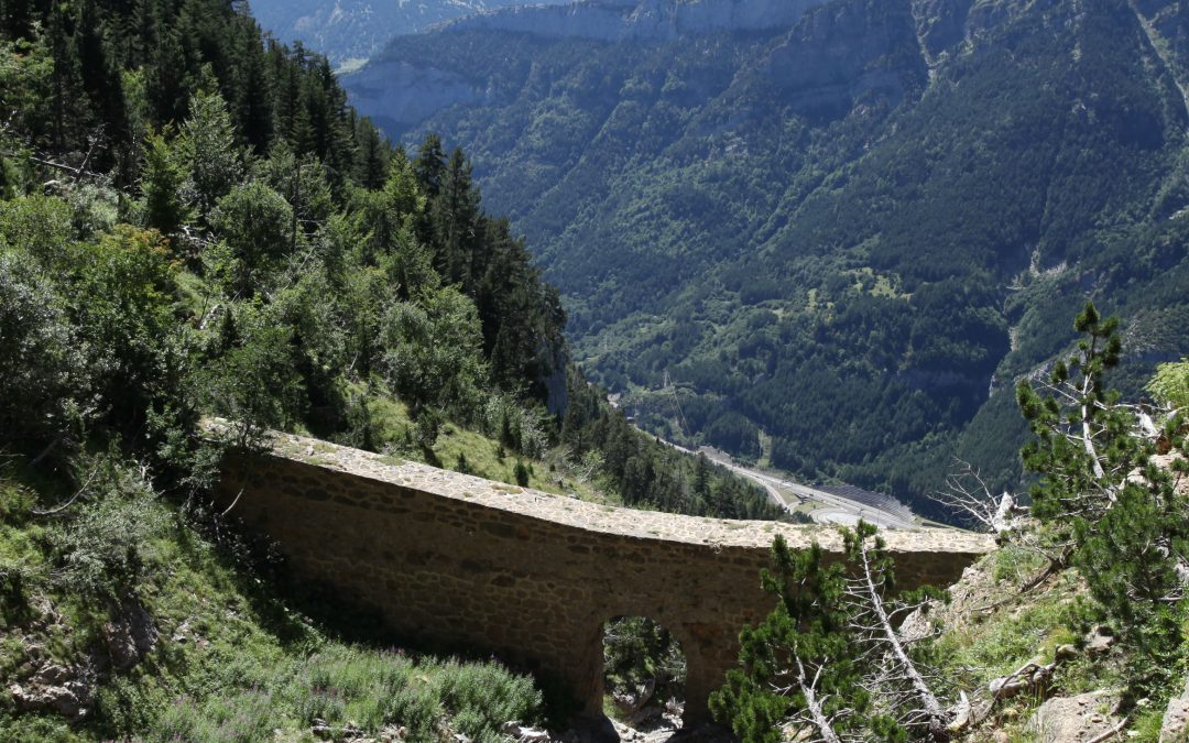 Excursión guiada en agosto al monte de los Arañones